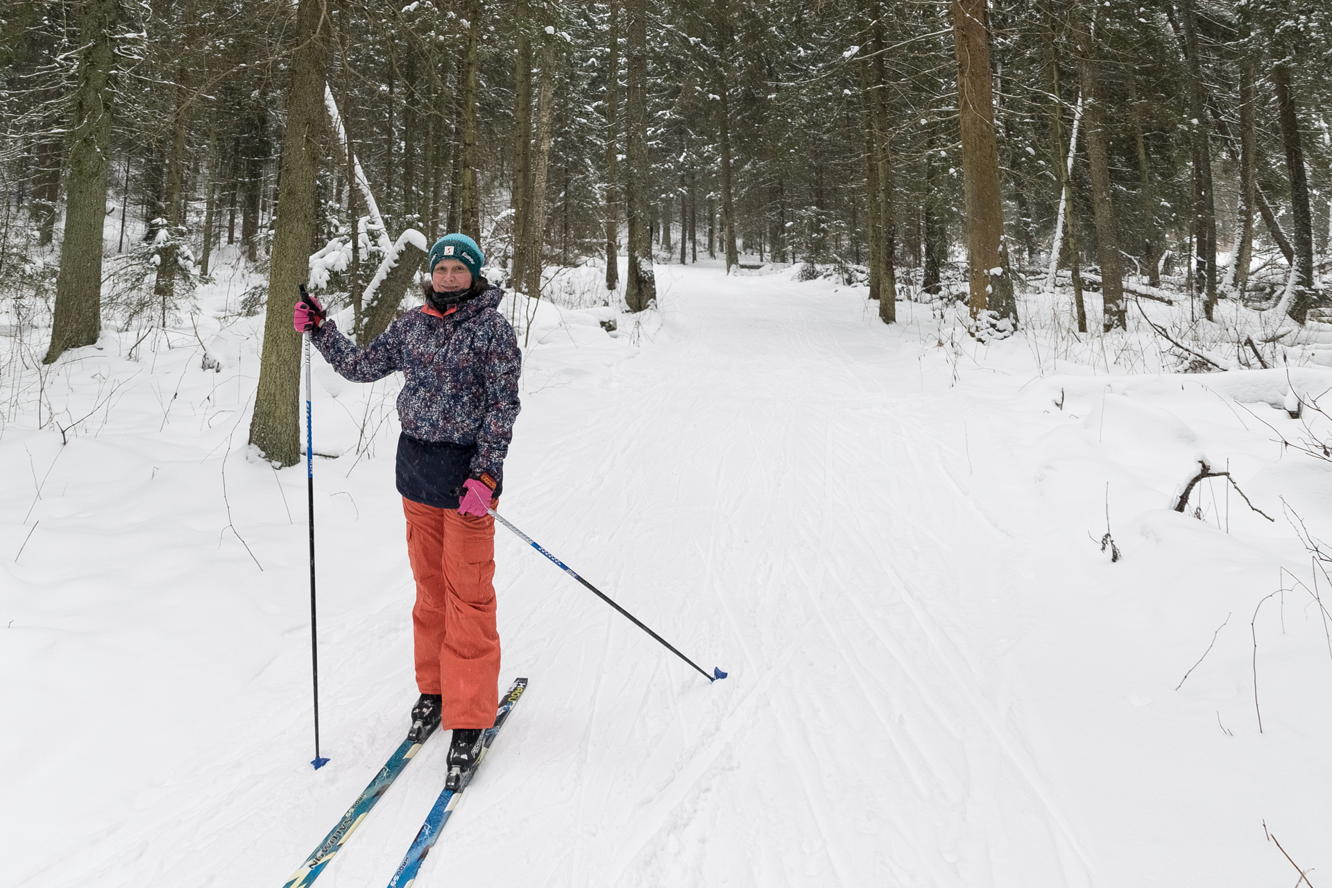 Лыжная трасса в лесу
