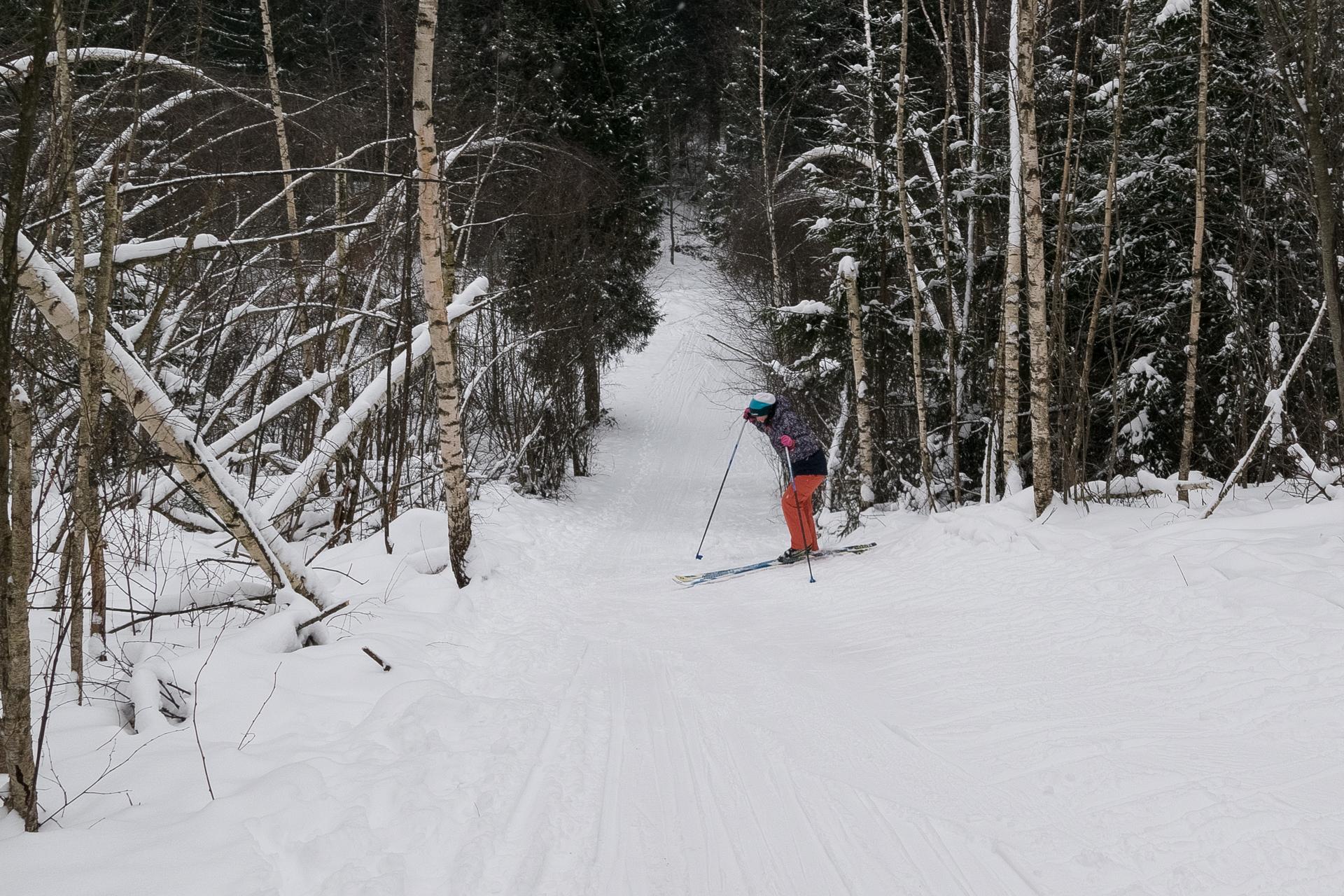 В горку на лыжах