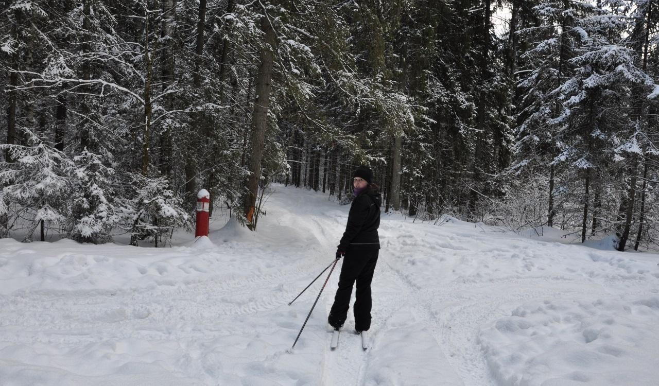 картинка лыжник 94 процента